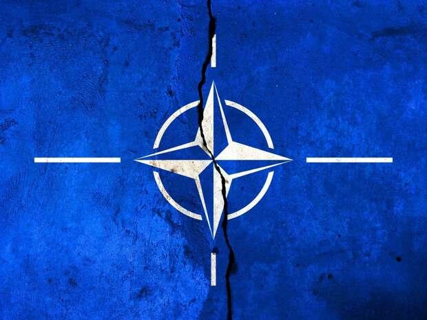 CounterPunch: Североатлантический Альянс должен быть распущен